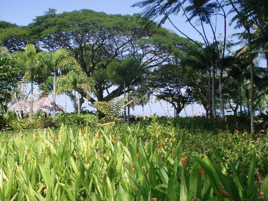 Shangri-La's Rasa Sayang Resort & Spa: Shangri La Garden