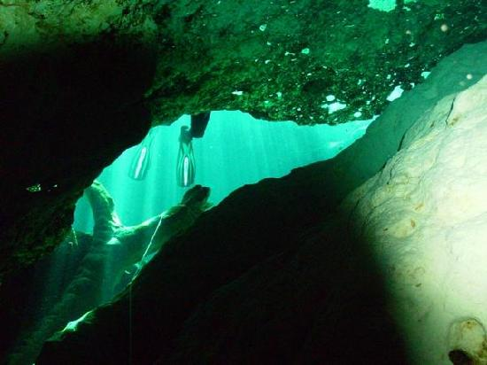 Ginnie Springs: My fins - Devil's Cave System