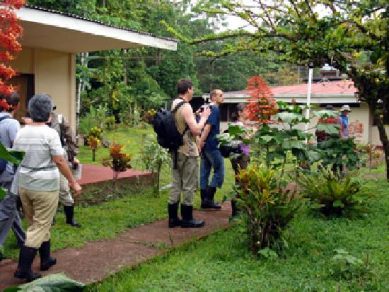 Hotel Ilan-Ilan Trails & Lodge: The garden