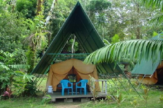 Corcovado Adventures Tent Camp Foto