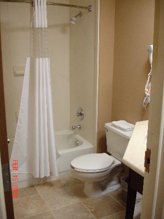 Hampton Inn Mattoon: Guest Bath