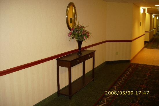 BEST WESTERN Danville Inn: The hallway