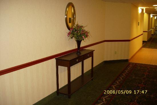 BEST WESTERN Danville Inn: The hallway