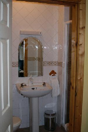 Pearse Lodge B&B: Entrance to the bathroom