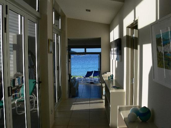 Hahei Oceanfront: The Oceanfront through-vista