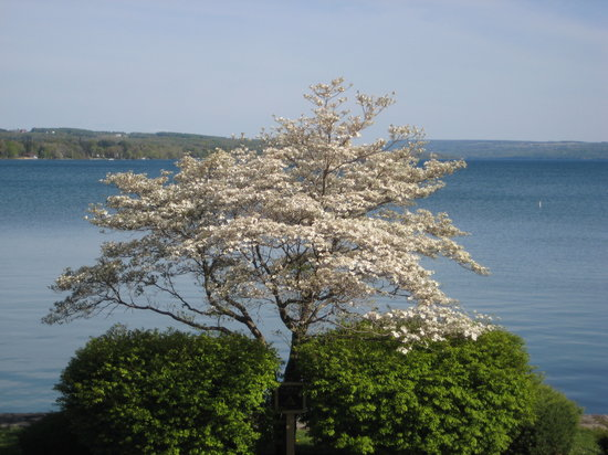 Skaneateles, Нью-Йорк: Lake in early May