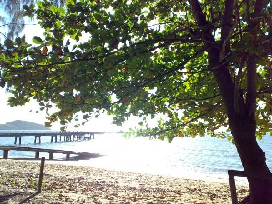 Paradise On The Beach Resort Palm Cove: early morning walk out towards the jetty, lovely view of islands from there