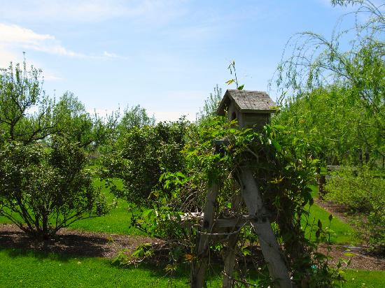 Wine Country Inn Bed & Breakfast: Birdhouse and Gardens