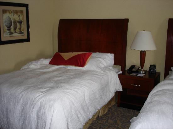 Hilton Garden Inn Champaign/ Urbana: room