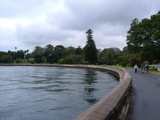 The Opera House to the Botanic Gardens Walk: Walkway around the cove
