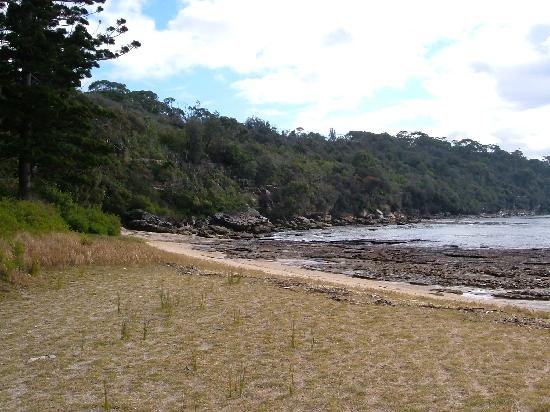 Bradleys Head Trail: A secluded beach at Bradley's Head