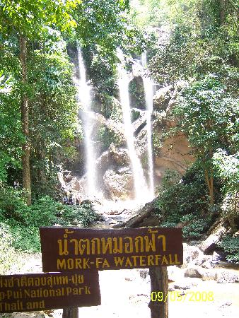 Libra Guest House: Waterfall