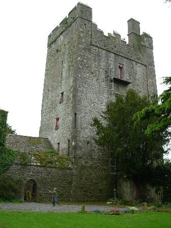 Foulksrath Castle: The castle!