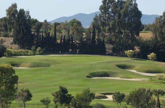 Golf Yasmine: Great hole