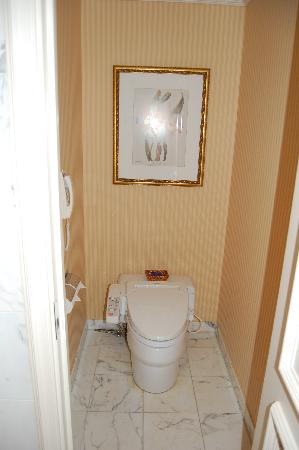 Groovy Toilet Bidet And Bottom Dryer Picture Of The Ritz Carlton Pabps2019 Chair Design Images Pabps2019Com