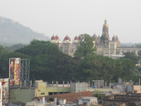 Hotel Chandra Palace: view from the roof top