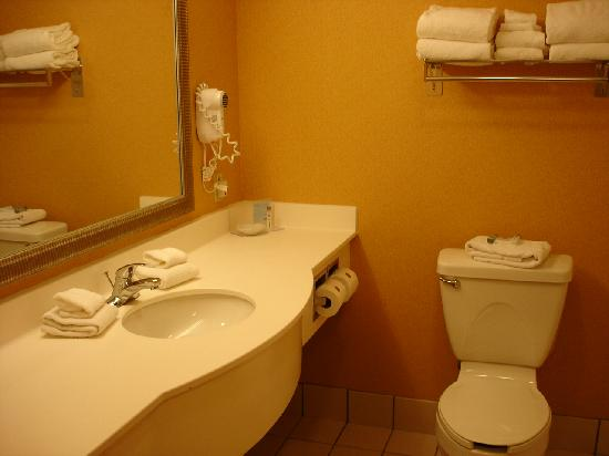 Hampton Inn Champaign/Urbana: bathroom