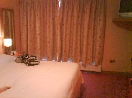 Viking Hotel Waterford: Ramada 1