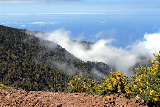 Breña Baja, España: View from over 2000 metres on the edge of the Caldera de Taburiente.