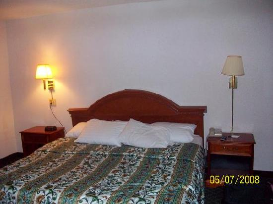 La Quinta Inn North Myrtle Beach: King size bed of Hotel