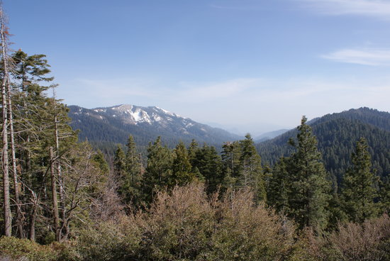 Montecito Sequoia Lodge & Summer Family Camp: BIg Baldy - near lodge