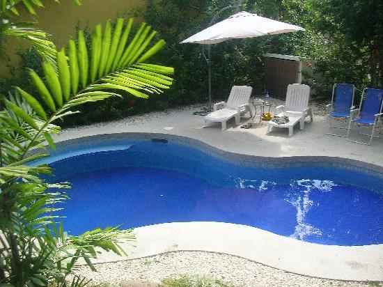 Horizon Ocean View Hotel and Yoga Center: Villa pool