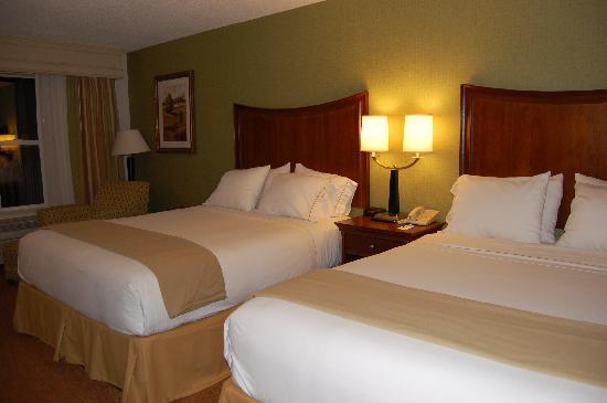 Holiday Inn Express Asheville: Hotel room