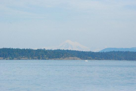 Puget Sound Express - Day Trips: Mt. Baker in the background...beautiful!