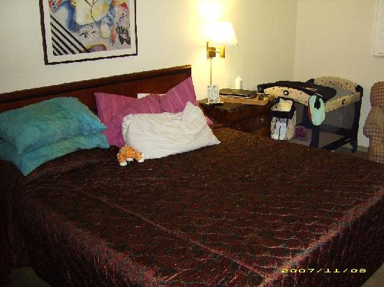 LivINN Hotel St Paul East / Maplewood: The queen size bed in our room was comfortable and clean.