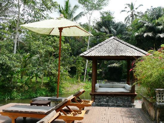Villa Semana: jardin