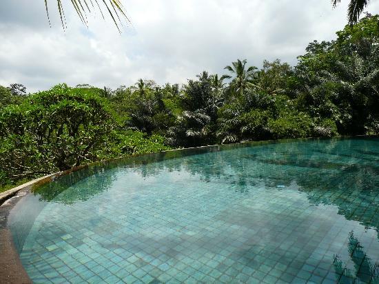 Villa Semana: piscine