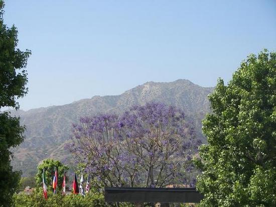 Days Inn Glendale Los Angeles: Outside view