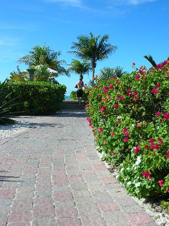 Royal West Indies Resort - path to the beach