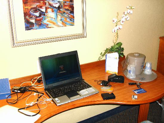 Hampton Inn Geneva: The Desk