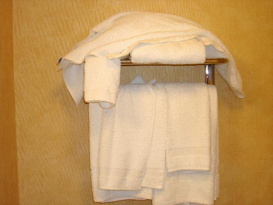 Hampton Inn Geneva: Plenty of towels
