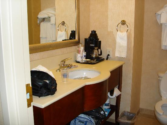 Hampton Inn Geneva: The bathroom vanity
