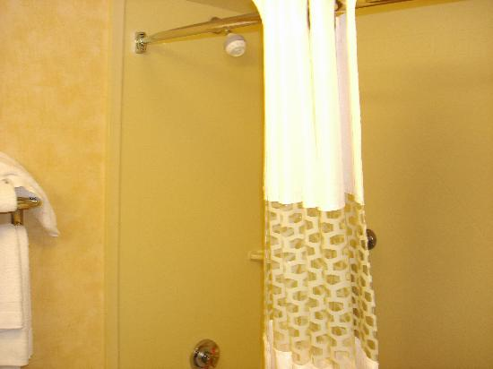 Hampton Inn Geneva: The shower