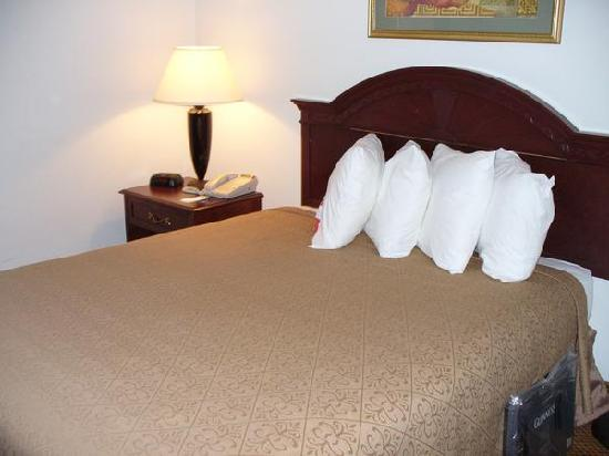 MOXY New Orleans Downtown/French Quarter Area: The bedroom (both bedrooms are identical)
