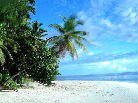 Ihuru Island: bar