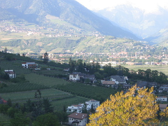 Restaurants Lana