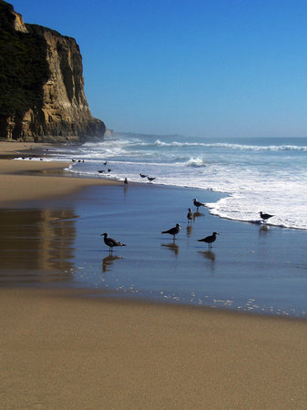 "Half Moon Bay, Californie : ""Reflections"" - Pomponio Beach"