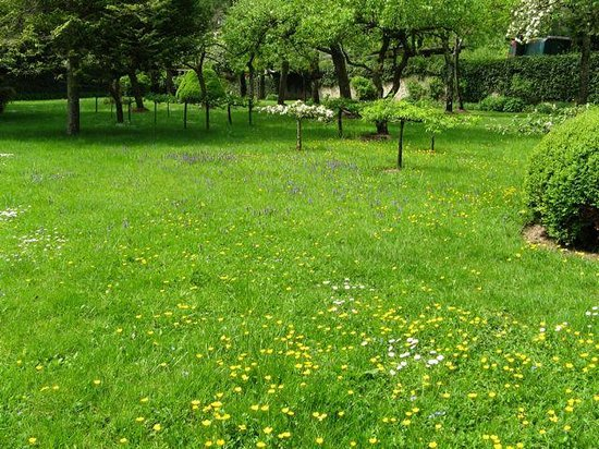 L'Esperance : Expansive garden area
