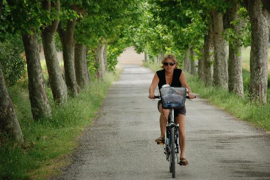 Ginestas, France: Easy cycling Canal Du Midi
