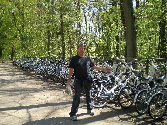 De Hoge Veluwe National Park: choosing a White Bike at Hoge Veluwe National Park