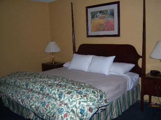 The Springs Hotel & Spa: The beds are actually pretty nice and comfortable.