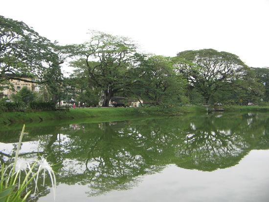 View of Taiping Lake