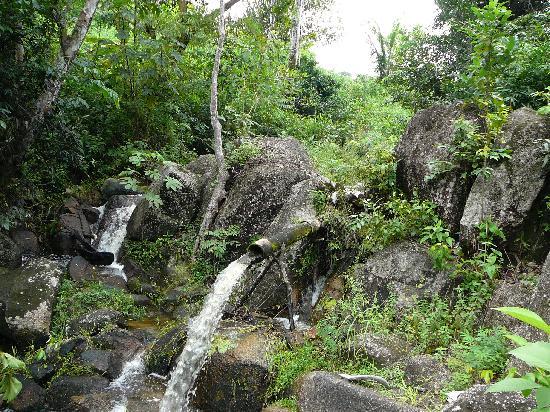 Trilha do Visgueiro: Man-Made Falls Refreshes Towards End