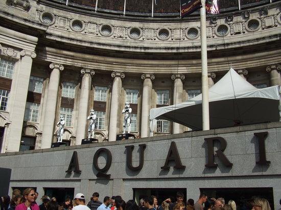 SEA LIFE London Aquarium: Aquarium