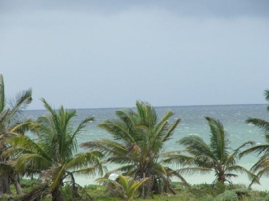 Telchac Puerto, Μεξικό: Gulf of Mexico