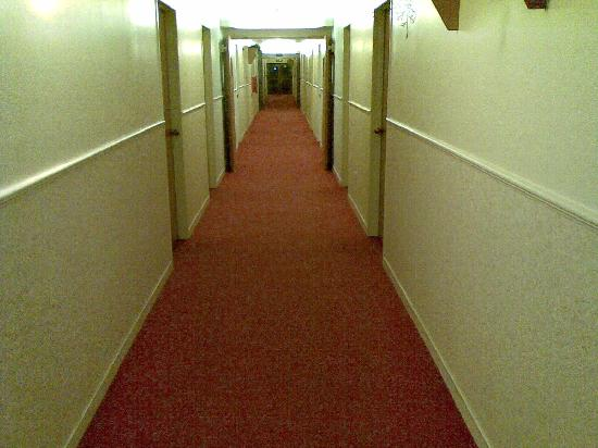Airport Garden Inn Hotel: hallway to room
